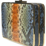 San Blas Pythin Clutch